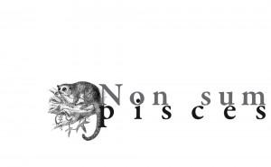 non-sum-pisces-omslag